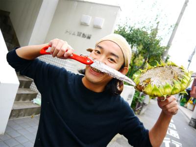 美容鍼灸東京豊島区文京区新宿区鍼灸師募集