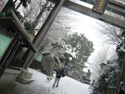 美容鍼灸 耳つぼダイエット 豊島区 文京区 新宿区 雑司ヶ谷